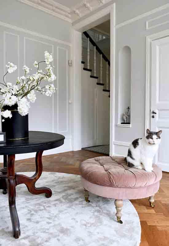 Elegant hallway with round rug
